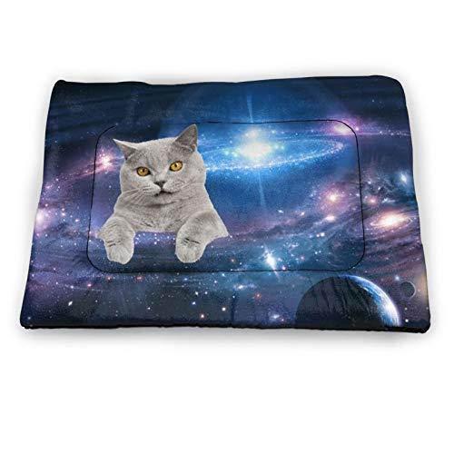 Alfombrilla para mascotas de 45,7 x 30,7 cm, suave, alfombrilla para jaula de mascotas OMG gatos en el espacio interior/exterior antideslizante almohadillas lavables para mascotas colchón para perros o gatos durmiendo