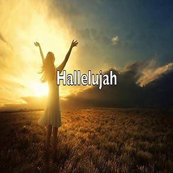 Hallelujah Versions