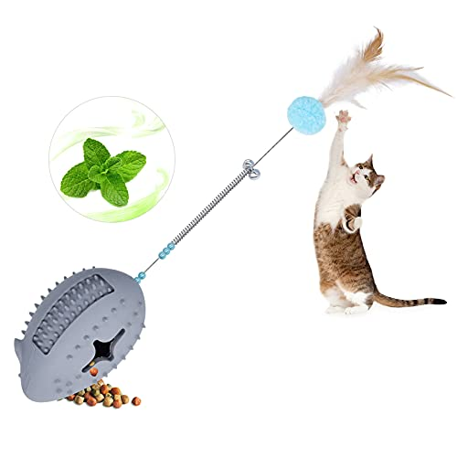 Petdexon Catnip Toys 5 in 1 Interactive Mouse Cat Chew Toy...