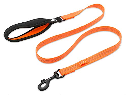 Chai's Choice Best New 2018! Outdoor Adventure II Dog Leash. 3M Reflective with Soft Sponge Handle. Matching Harness Available. (Small, Orange)