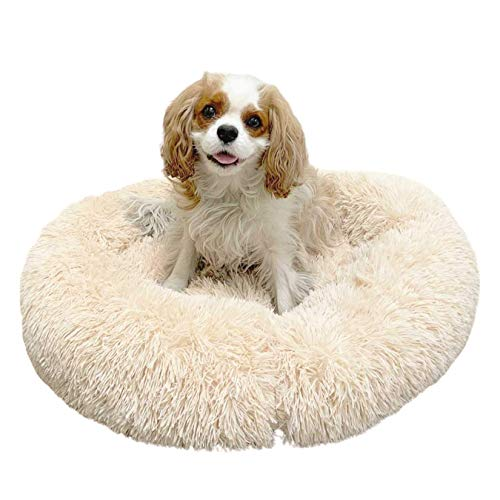 Alpha Paw Cozy Calming Dog Bed for Small Dogs, Anti Anxiety,...