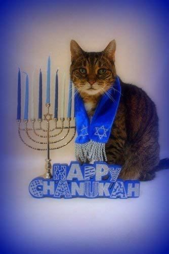 Snarky By Nature Greetings Funny Cat Hanukkah Card (Set of 5)