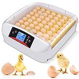 Incubatrice automatica 55 uova, Incubatrici con display digitale rotazione automatica e controllo della temperatura efficiente e intelligente