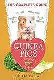 Guinea Pigs: The Complete Guide: Guinea Pig Care, DIY Toys, Popcorning, Guinea Pig Supplies