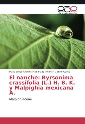 El nanche: Byrsonima crassifolia (L.) H. B. K. y Malpighia mexicana A.: Malpighiaceae