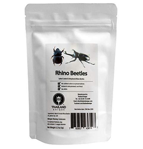 Rhino Beetles (カブトムシ6g)