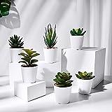 HapeeFun Plantas Suculentas Artificiales, 6 Piezas, Planta Artificial Decorativa, Adecuado para El Hogar Oficina Decoración Jardín Baño Cocina Balcón Planta Falsa Decorativas