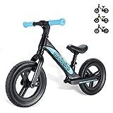 Kids Balance Bike for 2-4 Years Old, Blue