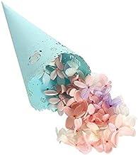 50Pcs Cute Wedding Party Confetti Cones Petal Candy Placing Wedding Favors Lace Paper Cones Wedding Decoration Supplies Dr...
