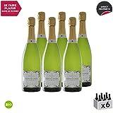 Crémant de Bourgogne Prestige de Constance Extra-Brut Blanc 2017 - Bio - Bruno Dangin - Vin effervescent AOC Blanc de Bourgogne - Cépage Pinot Noir - Lot de 6x75cl