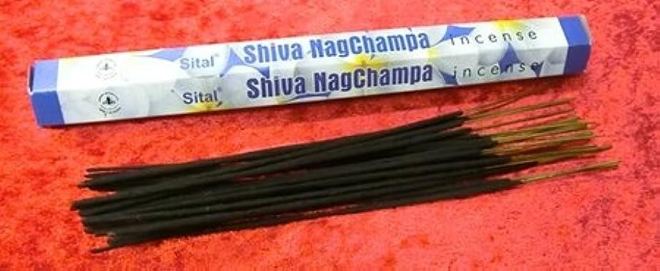 意気込みに負けるドアミラーインセンス お香 Sital Shiva Nagchampa 約ナグチャンパ香 20本入り