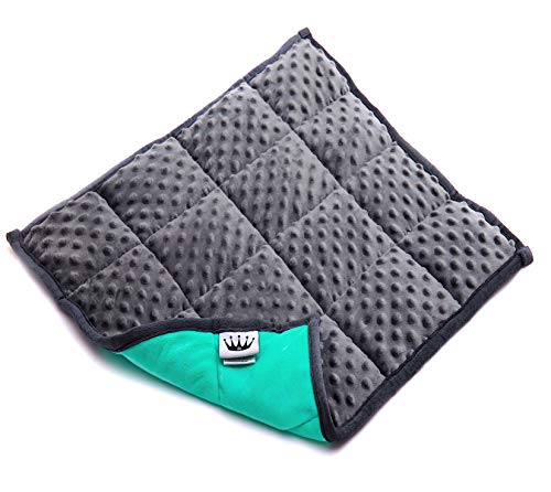 Red Rocks, Weighted Lap Pad for Kids (Grey) 21 x 1 x 19 inches 4.6 pounds. Classroom and Special Study Materials. Great Gift for Parents and Seniors!!!
