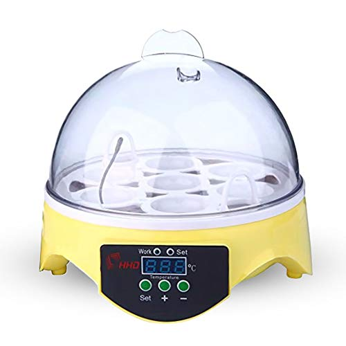 Petra Digital, Fully Automatic Egg Incubator (7 Eggs) with Intelligent Temperature and Humidity Control, Poultry Hatcher for Chicken, Ducks, Geese, Pigeons