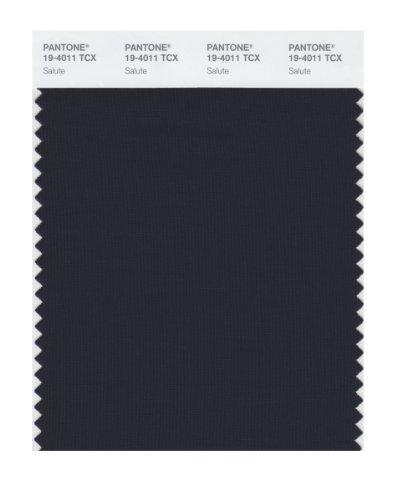 Pantone 19-4011 TCX Smart Color Swatch Card, Salute by Pantone