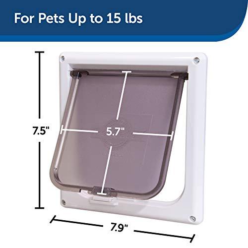 Pet Safe PetSafe Small 2-Way Locking Cat Door