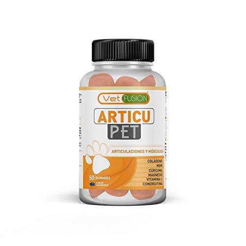 Antiinflamatorio para perros y gatos | Con colágeno + cúrcuma + condroitina y magnesio para recuperar su energía y movilidad | Combate el dolor y la inflamación en tu mascota | 50 unidades sin azúcar