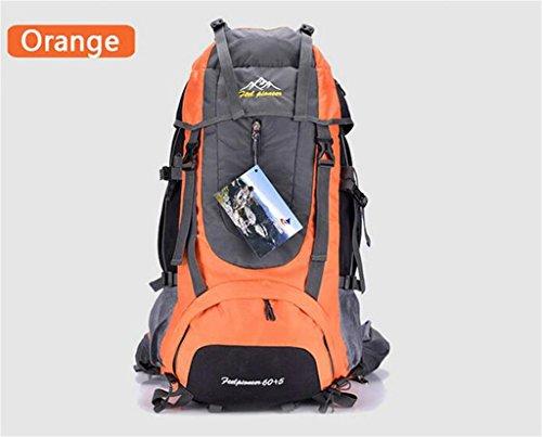 les hommes de sac à dos en plein air et les femmes sac à bandoulière sac à bandoulière grand sac à dos Voyage capacité forfait randonnée imperméable à l'eau de camping 65L ( Couleur : Orange , taille : 65L )