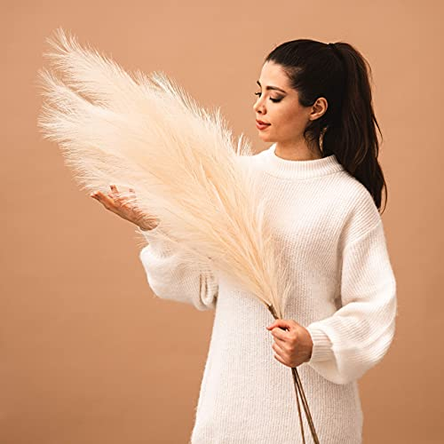 Brooklyn Theory Faux Pampas Grass Large, 43