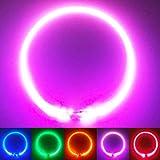 PetSol Collier Chien LED Lumineux Rechargeable LED Clignotant Collier de Sécurité Taille Unique pour Tous Les Chiens. pour Les Petits Grands Chiens de Taille Moyenne Qui Courent la Nuit (Rose)