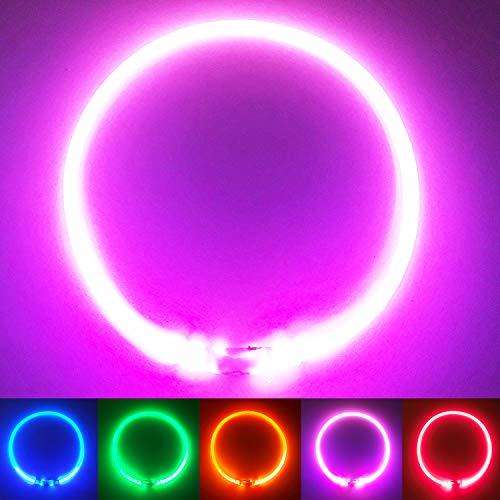 PetSol LED Leuchthalsband für Hunde USB Aufladbar LED Hundehalsband Stück hundehalsband Leuchtend Wiederaufladbares und Längenverstellbareres mit DREI Beleuchtungsmodi für Hunde und Katzen (Pink)