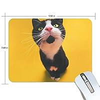 マウスパッド 面白い猫 ゲーミングマウスパッド 滑り止め 19 X 25 厚い 耐久性に優れ おしゃれ