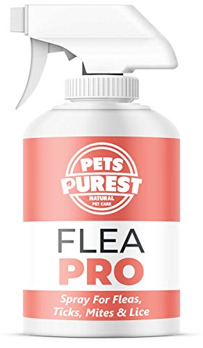 Pets Purest 100% natural de la pulga spray para los perros (