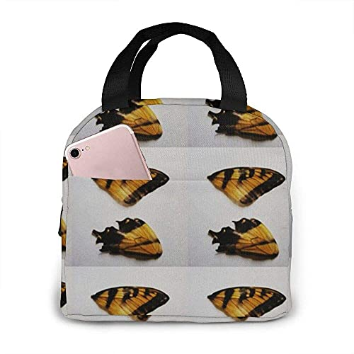 Monarch Wings tragbare isolierte Lunchbox wasserdichte Tote Bento Bag für Büro Wandern Strand Picknick Pic