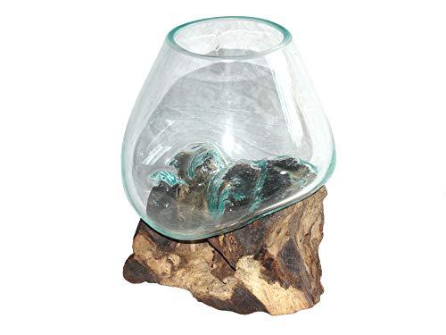 Deko Glasvase Blumenvase S Ø 15-20 cm individuell auf Treibholz/Wurzelholz spezielle Vase mit Holz Wurzel