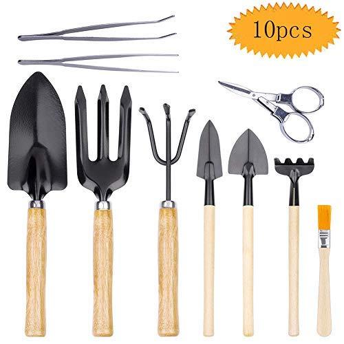 bluesees Lot de 10 mini outils de jardin pour bonsaï - Kit d'outils à main pour débutants - Ciseaux pliables, brosses, pinces, mini râteau, pelle à désherbage, fourchette et coupe-feuilles