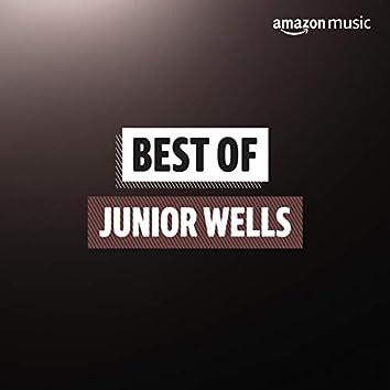Best of Junior Wells