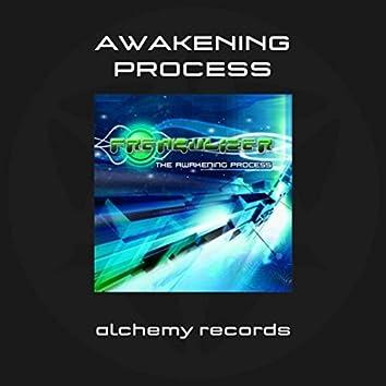 The Awakening Process