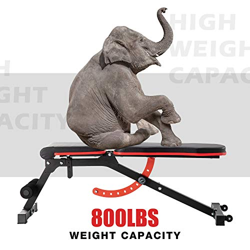 ER KANG Adjustable Weight Bench- 8+4 Positions Fitness Workout Bench, Multi-Purpose Incline/Deline/Flat Bench for Home Gym, Strength Training, Ship from the US