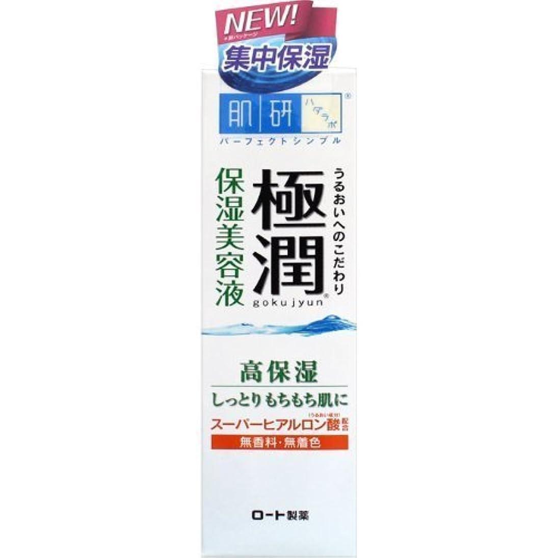 アルカイックドアミラークロニクル肌研(ハダラボ) 極潤 ヒアルロン美容液 30g