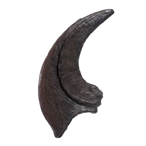 TRIASSICA Triásico - Pinza para violador, réplica de fósil de Dinosaurio