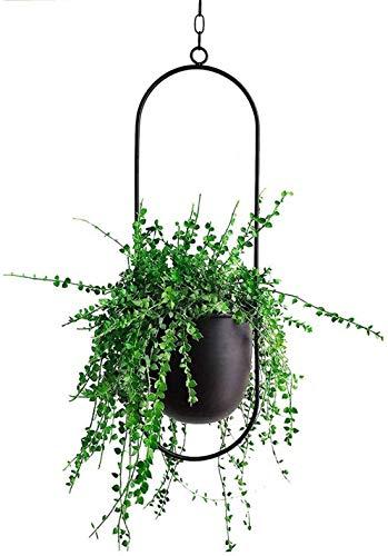 Cratone hangende plantenhanger, metaal, zwarte bloempot, plafond, hangende pot voor kamerplanten, vetplanten…