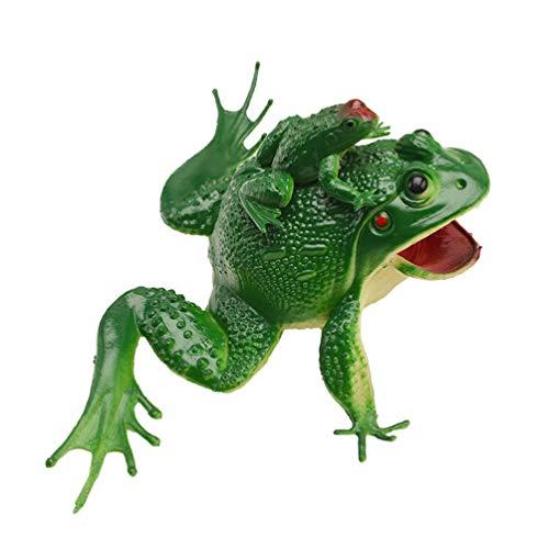 NUOBESTY Simulation Frosch Spielzeug Kunststoff Frösche Spielzeug Gummi Frösche Regenwald Charakter Spielzeug Mini Figur Home Desktop Dekor