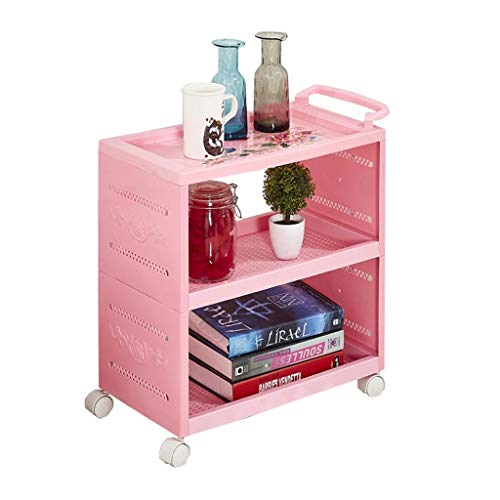 BNSDMM Regal - Schönheits-Auto-Friseursalon-Werkzeug-Wagen 2 Schichten - 3 Schichten Plastiklaufkatze-Ausgangsküche-Badezimmer-Zahnstange (Color : Pink, Size : 50x28x80cm)