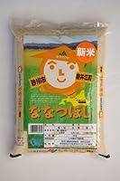 【新米】【精米】JA新すながわ 北海道産 白米 ななつぼし 5Kg 令和元年産