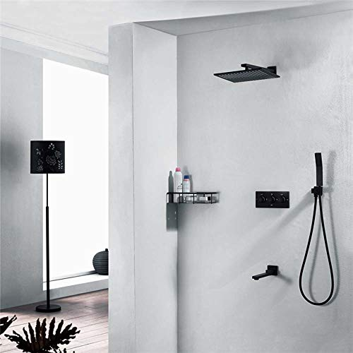 For Sale! Hot and Cold Fly Rain Lift Shower Set 10 Inch Spray Top Three Functions Plated Dark Shower...