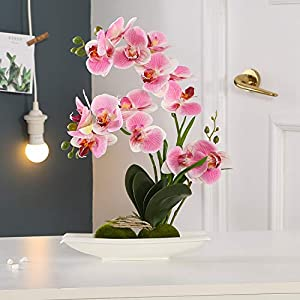 KINBEDY Aritifical Bonsai Silk Orchids Phalaenopsis with Vase Home Office Decoration Party Wedding Decor.