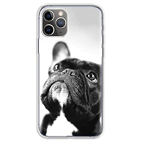 Bulldog Phone Case French Bulldog Phone Case for iPhone 6 7 8 11 12 Pro XS MAX XR X Mini Plus SE 2020 Soft Silicone Phone Cover 009