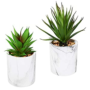 Tiita 9.2″ x 3.3″ Artificial Plant in Concrete Cement Pot, 2 Pack Fake Small Greenery Perfect for Office Home, Kitchen, Bathroom, Bookshelf