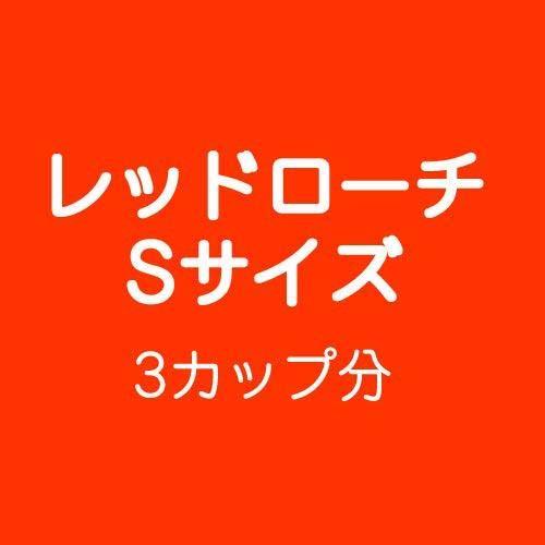 (生餌)レッドローチ Sサイズ 3カップ分 爬虫類 大型魚 餌 エサ 沖縄・離島不可 タイム便・航空便不可