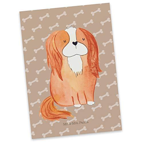 Mr. & Mrs. Panda kaart, cadeaubon, Ansichtkaart Cavalier Koning Charles Spaniel - Kleur Geluk van honden