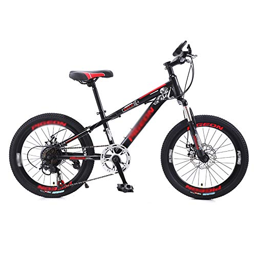 Mountain Bike Adult Bikes with Dual Disc Brake and Dual Suspension, Featuring 30 Spoke Wheels and 21 Speed, High Carbon Steel Frame Anti-Slip Bicycles (20/22 Inch),20 inch
