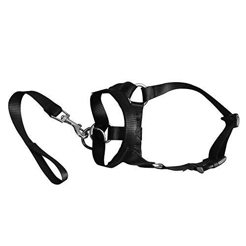 DDG EDMMS Dog Kopf Kragen Kopfharness Stops Hund zieht Leine Kopf Keine Trainings-Werkzeug Hunde Ziehen Sie Walks, einschließlich freies Training Führer - 38-50cm