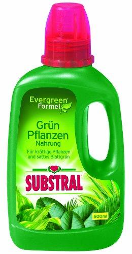 Substral Grün-Pflanzen Nahrung, Spezial-Flüssigdünger mit Eisen-Plus für Grünpflanzen- und Palmen mit wertvollen Nährstoffen und chelatisierten Spurenelementen - 500 ml