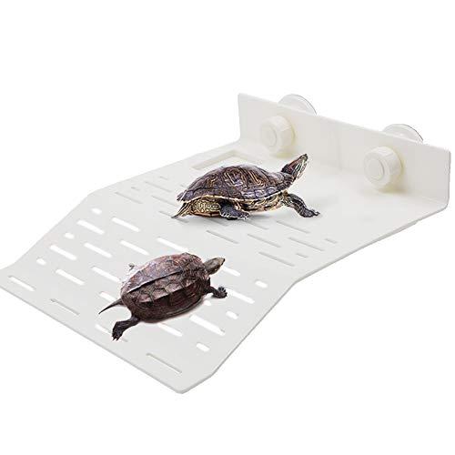 LFS - Banco de tortuga flotante con plataforma para tumbonas