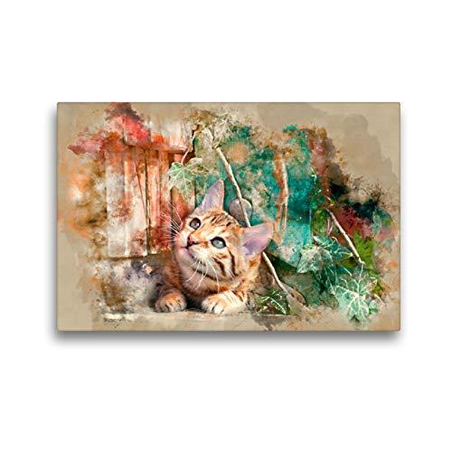 CALVENDO Premium Textil-Leinwand 45 x 30 cm Quer-Format Die Junge Katze unter´m Zaun, Leinwanddruck von Bacamel