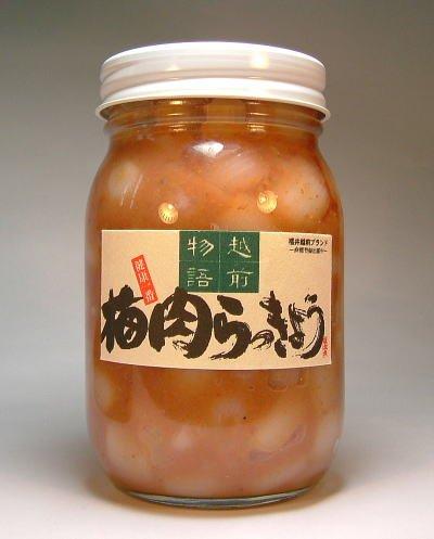 梅肉らっきょう ピリ辛風味 【500g】国産 福井県産ラッキョウ